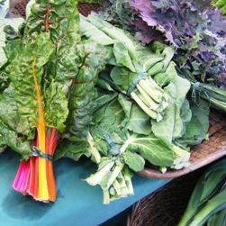 Kale at the Farmer's Market