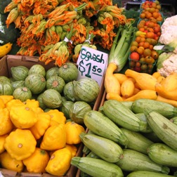 squash at the Farmer\'s Market